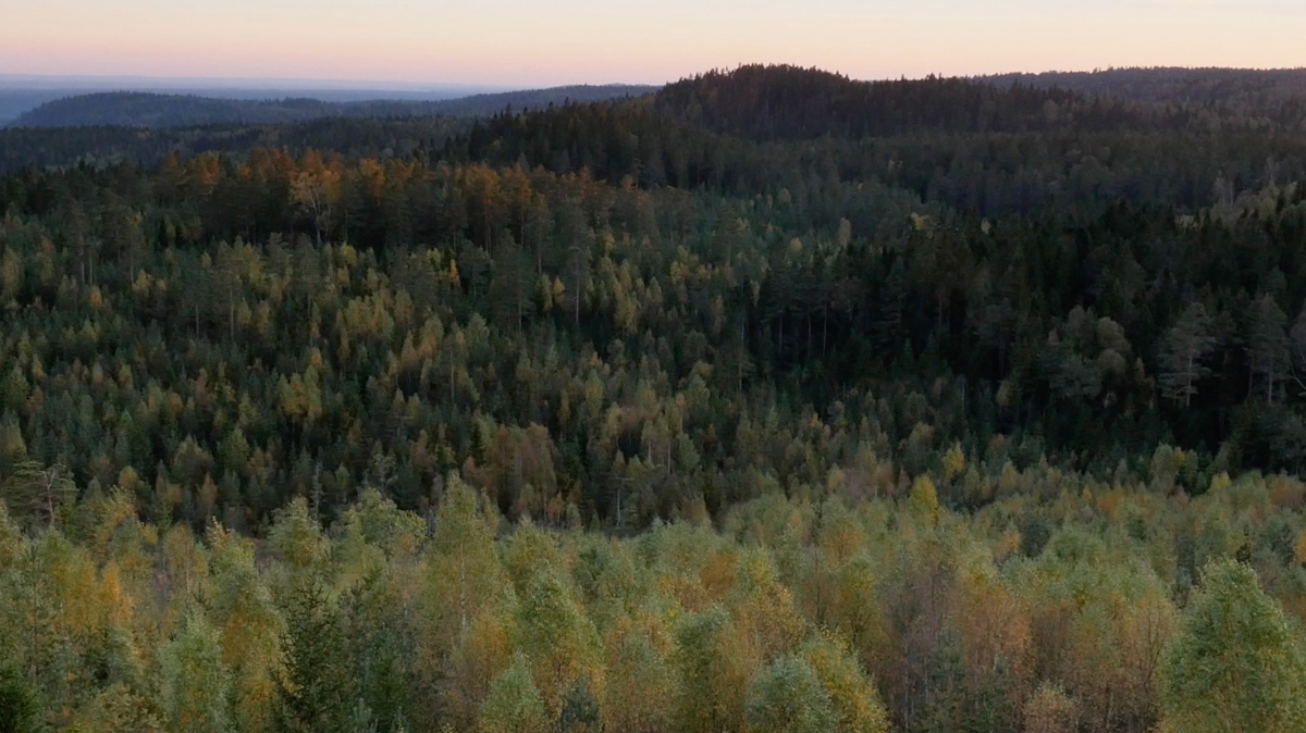Nordic Panoramas, Landscape No. 2 is selected to represent Filmform at the Luleå Biennale